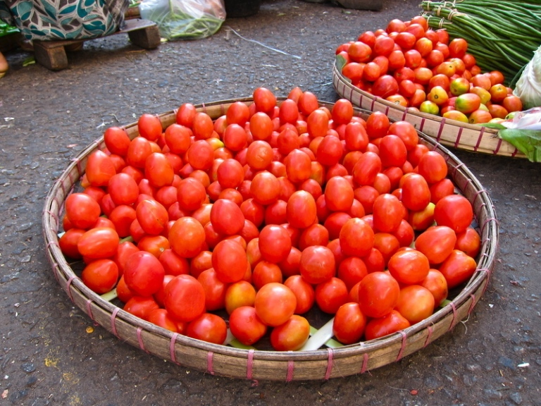 Tomato_goods_display_2