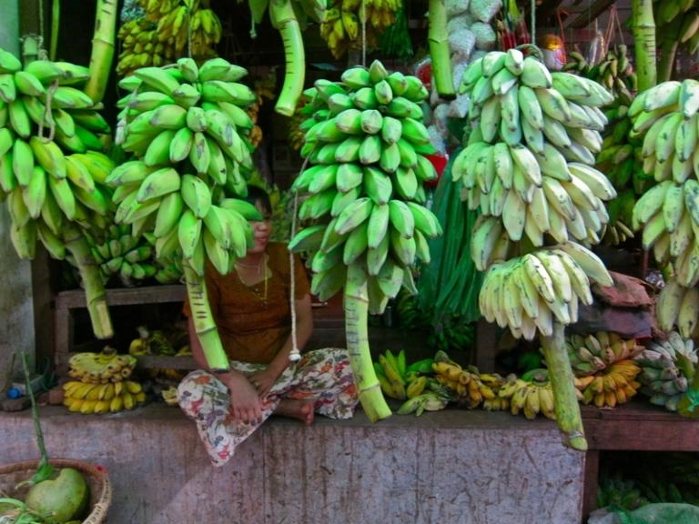 Banana_weathering_2