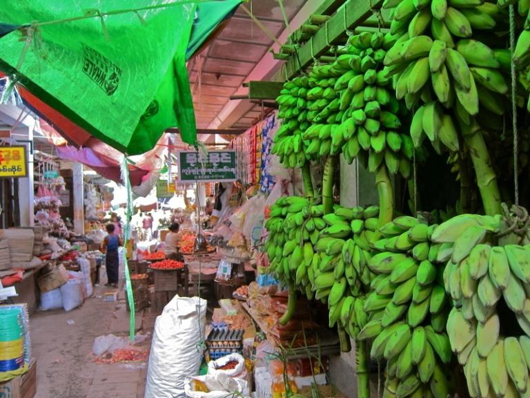 Banana_weathering_3